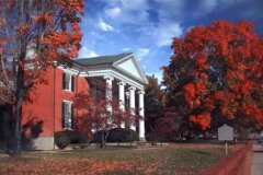 fall foliage at the Courthouse